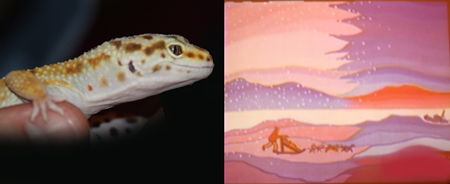 "Two Memories from the Exploration Place: Freckles the Leopard Gecko and a scene from ""The Cremation of Sam McGee"""
