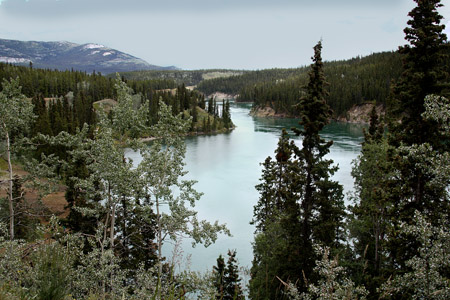 The Yukon Between Whitehorse and Our RV Park