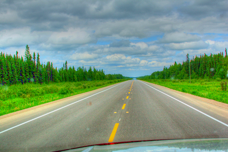 This Is the Scene Before Us for Many of 1,500 Miles of the Alaska Highway