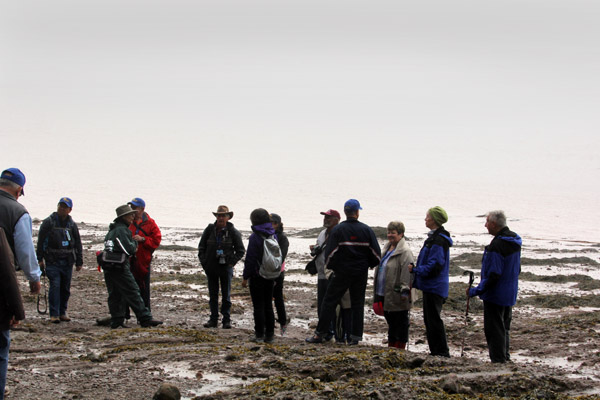 Members of our caravan continguent descended onto the seabed of the Bay of Fundy in New Brunswick