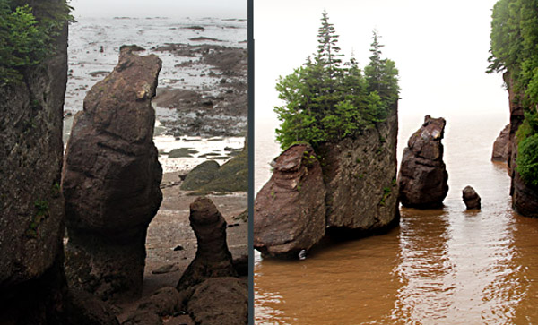 "The Rock Bear stands firm as the Bay of Fundy tide rolls in from zero, at lft, to 42 feet.  The monolith in the middle is one of Hopewell Rocks famous ""Flowerpots.."""