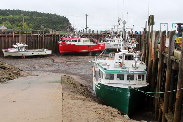 The harbor at Alma is a sad sight .. until the tide rolls in and all boats are ready to put to sea again.