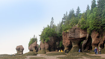 At the sea, at the sea, at the bottom of the sea -- The Bay of Fundy provides a low-tide spectacle