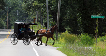 You don't see this on Interstates. We share the road with Amish, who cling to their heritage