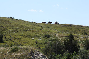 A scene in Theodore National Park, North Dakota, where cowboys roam among the herds of feral horses.
